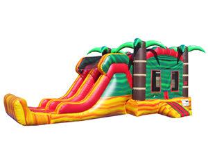 Bounce House & Slide Combos